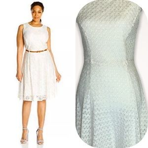 Women's Sharagano Lace Fit & Flare Dress